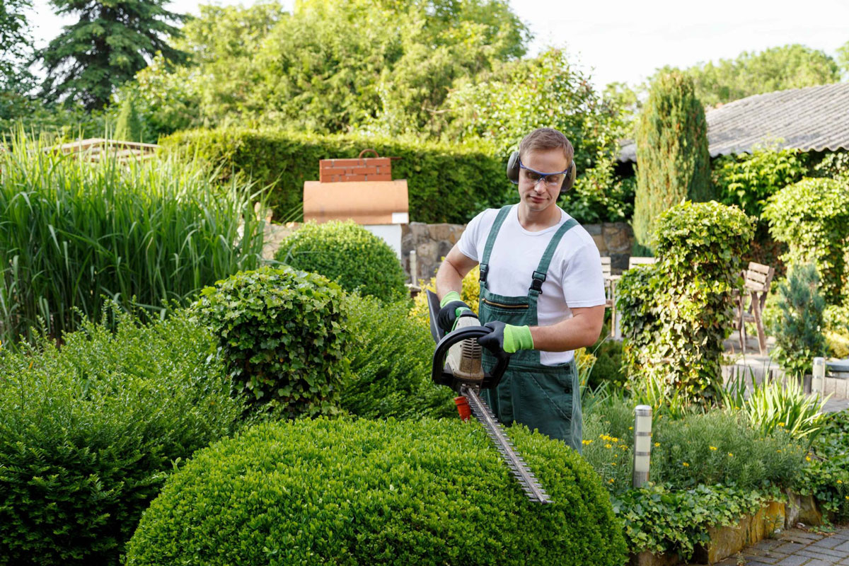 Садовник Gardener